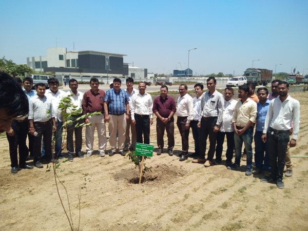 Plantation at Dahej SEZ